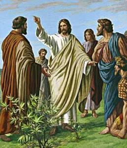 Jesus allez donc de toutes les nations